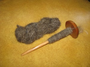 Skein and Spindle of Dog Hair